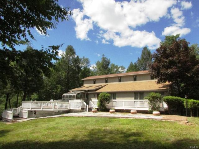 126 Lake View Drive, Swan Lake, NY 12783 (MLS #4974793) :: Mark Boyland Real Estate Team
