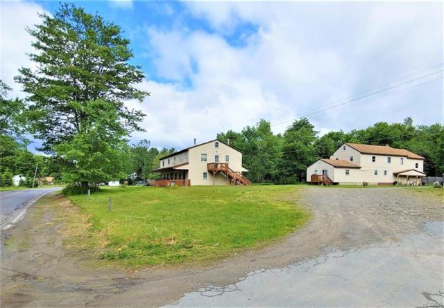 479 Debruce Road, Livingston Manor, NY 12758 (MLS #4974847) :: William Raveis Legends Realty Group