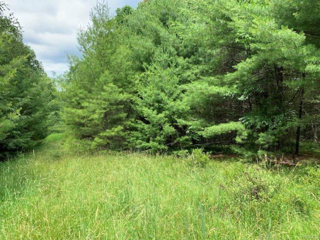 Forestburgh Road, Glen Spey, NY 12737 (MLS #4975382) :: William Raveis Legends Realty Group