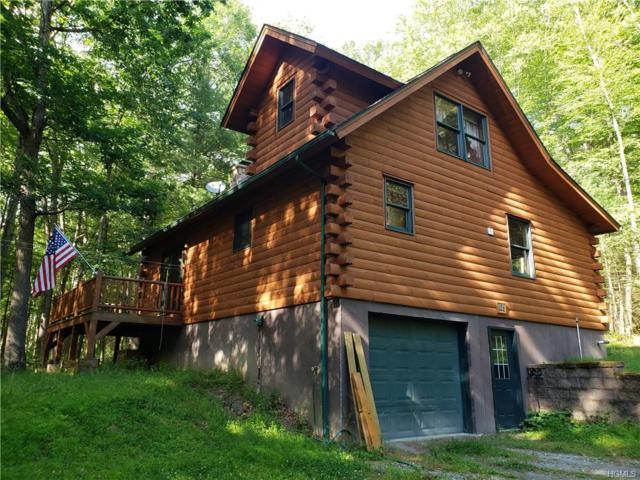 128 Homeyer Road, Sparrowbush, NY 12780 (MLS #4975383) :: William Raveis Legends Realty Group