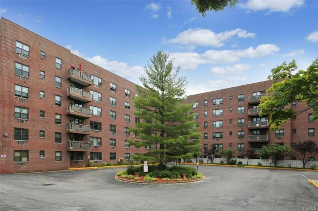 77 Carpenter Avenue 6C, Mount Kisco, NY 10549 (MLS #4975408) :: William Raveis Legends Realty Group