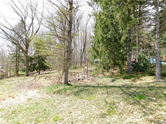 2054 State Route 94, Cornwall, NY 12577 (MLS #4975443) :: The McGovern Caplicki Team