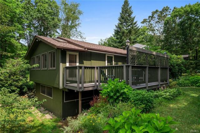 362 Dog Tail Corners Road, Wingdale, NY 12594 (MLS #4975488) :: Mark Boyland Real Estate Team