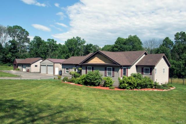 310 Brimstone Hill Road, Pine Bush, NY 12566 (MLS #4979159) :: William Raveis Legends Realty Group