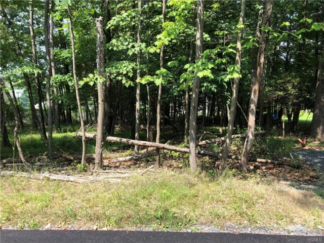 Mountain Avenue, Monroe, NY 10950 (MLS #4982262) :: Mark Boyland Real Estate Team