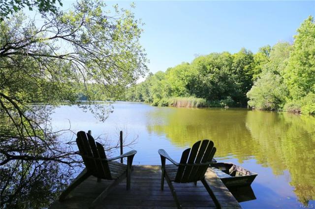32 E Lost Lake Drive E, Brewster, NY 10509 (MLS #4982488) :: The McGovern Caplicki Team