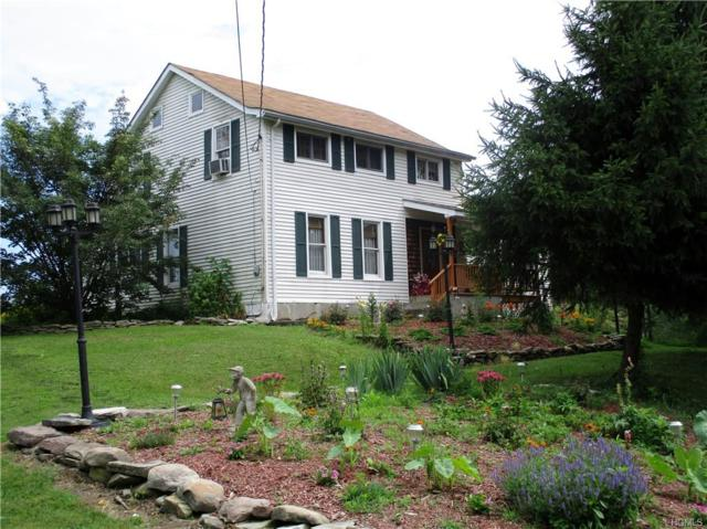2416 State Route 17K, Montgomery, NY 12549 (MLS #4983227) :: William Raveis Baer & McIntosh