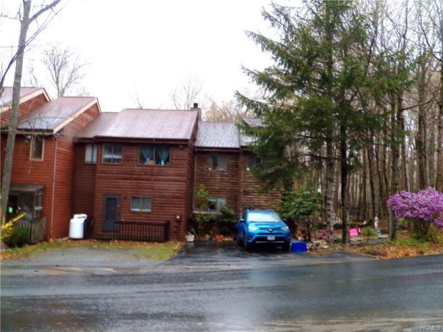 10 Alpine Drive, Woodridge, NY 12789 (MLS #4983654) :: The McGovern Caplicki Team
