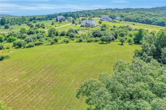 Well Sweep Lane, Chester, NY 10918 (MLS #4983737) :: The Anthony G Team