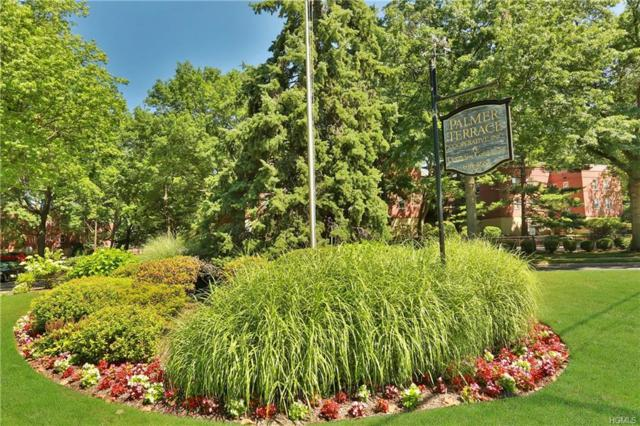325 Palmer Terrace 2F, Mamaroneck, NY 10543 (MLS #4984716) :: William Raveis Legends Realty Group