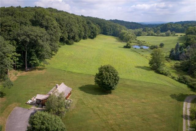 3881 Route 44, Millbrook, NY 12545 (MLS #4985045) :: The Anthony G Team