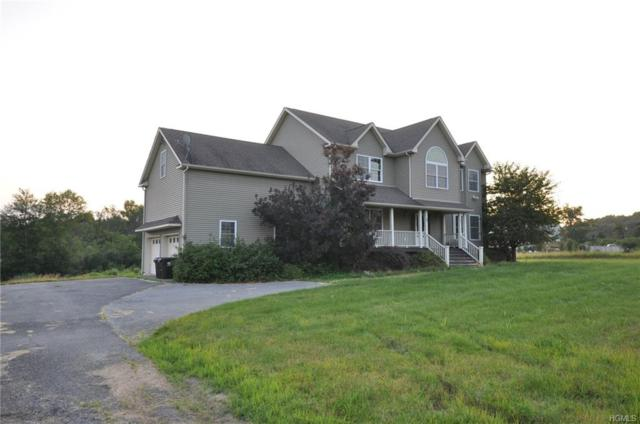 3 Dristin Drive, Blooming Grove, NY 10914 (MLS #4985352) :: William Raveis Baer & McIntosh