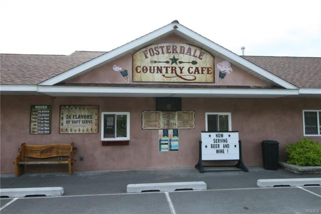 6193 State Route 52, Cochecton, NY 12726 (MLS #4986229) :: The McGovern Caplicki Team