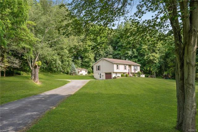 9 Winding Hills Drive, Florida, NY 10921 (MLS #4986612) :: William Raveis Legends Realty Group