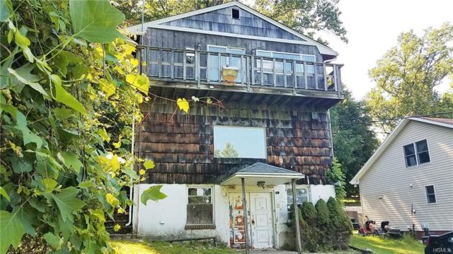 15 W Shore Drive, Putnam Valley, NY 10579 (MLS #4987137) :: The McGovern Caplicki Team