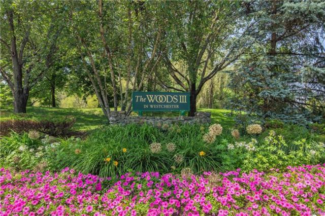 3 Elmwood Circle, Peekskill, NY 10566 (MLS #4987569) :: Mark Boyland Real Estate Team