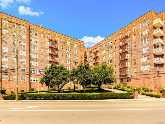 333 Bronx River Road #619, Yonkers, NY 10704 (MLS #4987620) :: Shares of New York