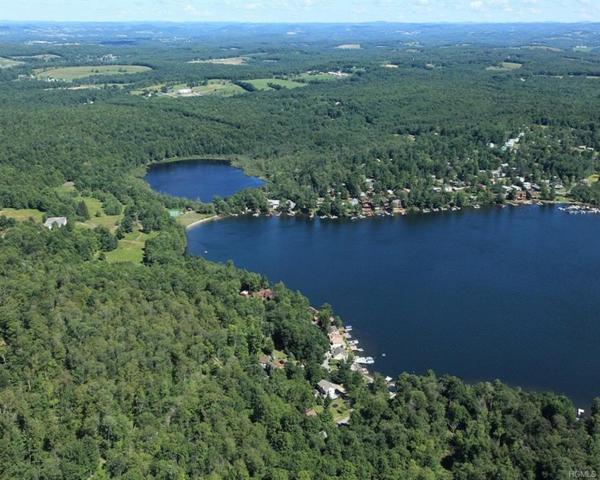 11 Lakeview Road, Kauneonga Lake, NY 12720 (MLS #4988949) :: Mark Boyland Real Estate Team