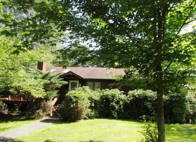 69 Lake View Drive, Swan Lake, NY 12783 (MLS #4989322) :: The McGovern Caplicki Team