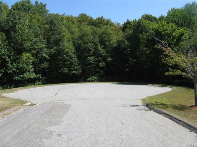 388 Mooney Hill Road, Patterson, NY 12563 (MLS #4989472) :: The Anthony G Team