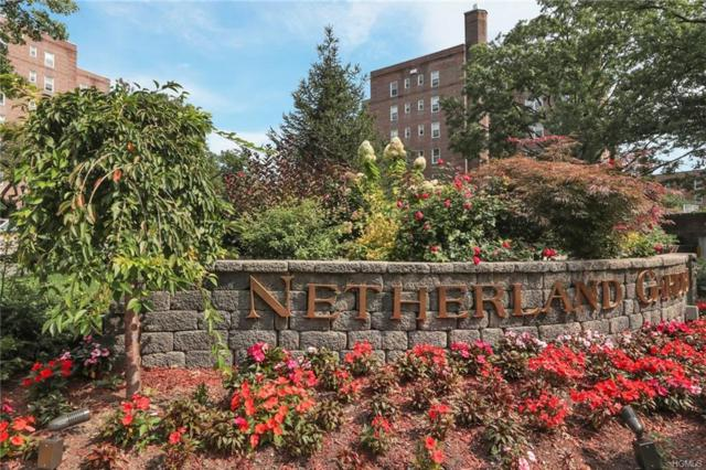 5615 Netherland Avenue 6A, Bronx, NY 10471 (MLS #4990815) :: William Raveis Legends Realty Group