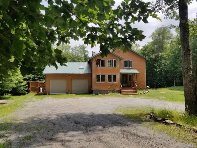 358 Horseshoe Lake Road, Swan Lake, NY 12783 (MLS #4990934) :: Mark Boyland Real Estate Team