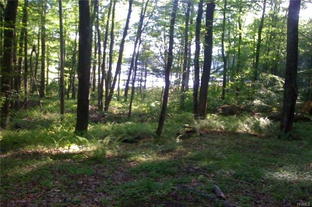 Lot 13 Woodstone Trail, White Lake, NY 12786 (MLS #4991043) :: The McGovern Caplicki Team