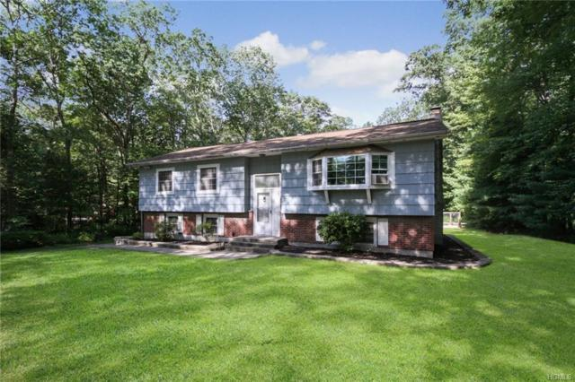 33 Blueberry Lane, Stormville, NY 12582 (MLS #4991044) :: Mark Boyland Real Estate Team