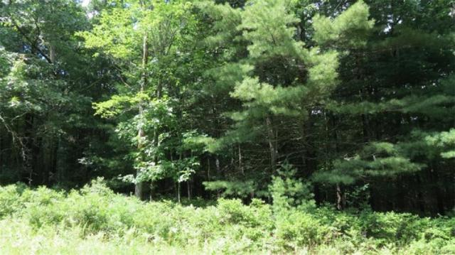 Lot #10 Francis Drive, Narrowsburg, NY 12764 (MLS #4991074) :: William Raveis Legends Realty Group