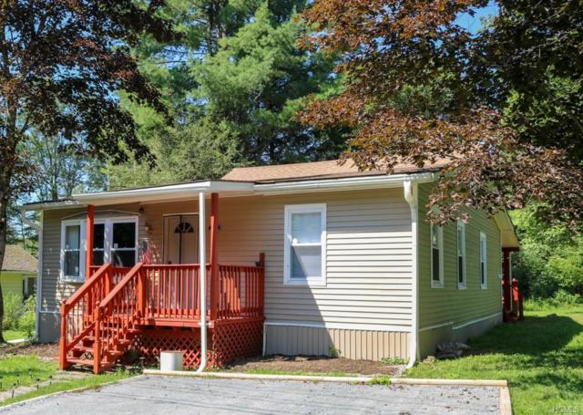 2 Black Foot Lane, Ferndale, NY 12734 (MLS #4991187) :: Mark Boyland Real Estate Team