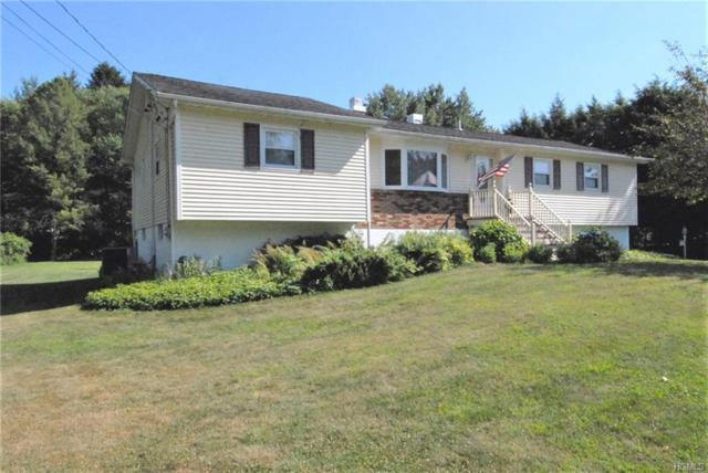 3 Potter Place, Hopewell Junction, NY 12533 (MLS #4991237) :: The McGovern Caplicki Team