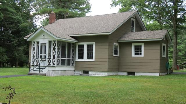 44 Dexheimer Road, Narrowsburg, NY 12764 (MLS #4991974) :: Mark Boyland Real Estate Team