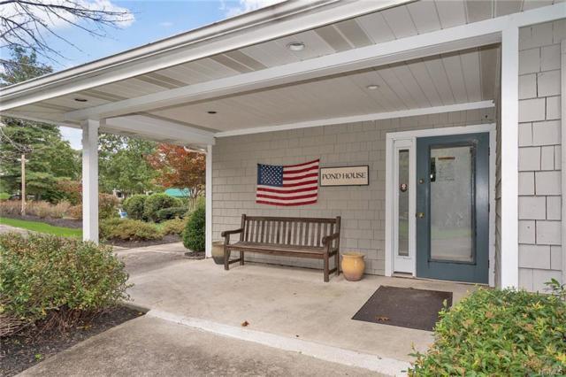 53 Horizon Farms Drive, Warwick, NY 10990 (MLS #4992283) :: Mark Boyland Real Estate Team