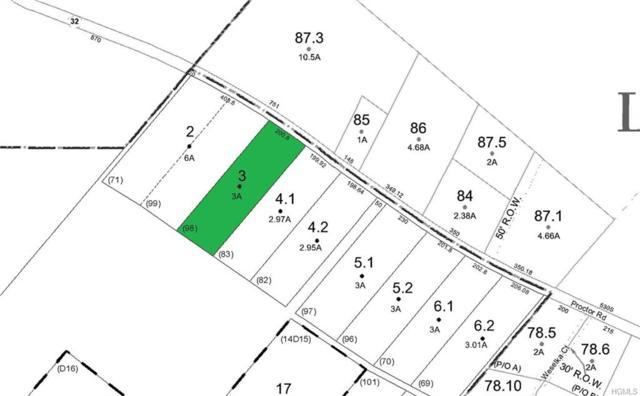 Lot 3 Proctor Road, Glen Spey, NY 12737 (MLS #4992366) :: The McGovern Caplicki Team