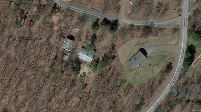 9 Colwell Lane, Bloomingburg, NY 12721 (MLS #4992433) :: Mark Boyland Real Estate Team
