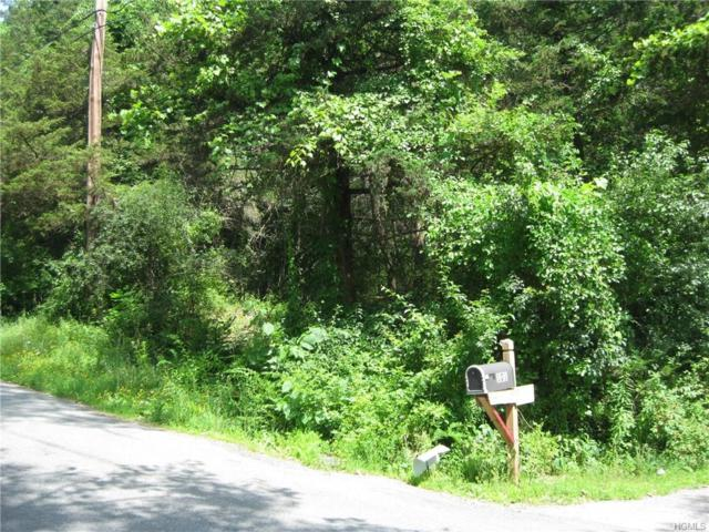 Sand Hill Road, Dover Plains, NY 12522 (MLS #4992615) :: William Raveis Legends Realty Group