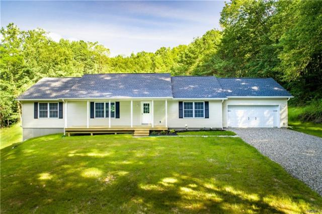 290 Hammond Hill Road, Dover Plains, NY 12522 (MLS #4993475) :: William Raveis Baer & McIntosh