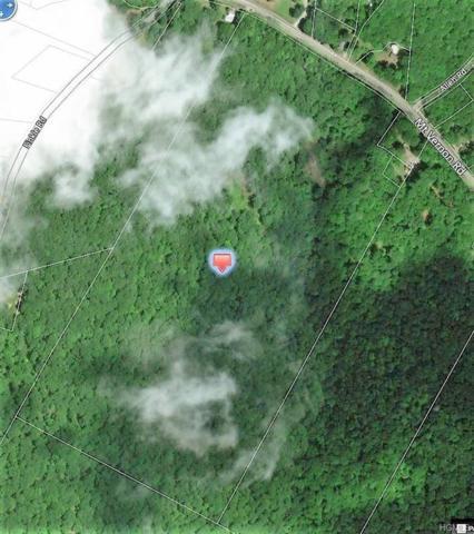 Mt Vernon Road, Wurtsboro, NY 12790 (MLS #4993703) :: William Raveis Legends Realty Group