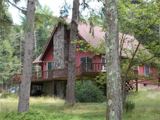 37 Lake Ridge Road, White Lake, NY 12786 (MLS #4993819) :: Mark Boyland Real Estate Team