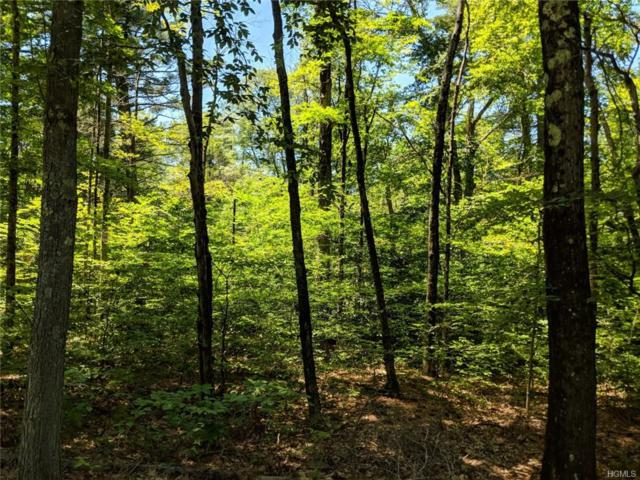 Plank Road, Forestburgh, NY 12777 (MLS #4994033) :: Mark Boyland Real Estate Team