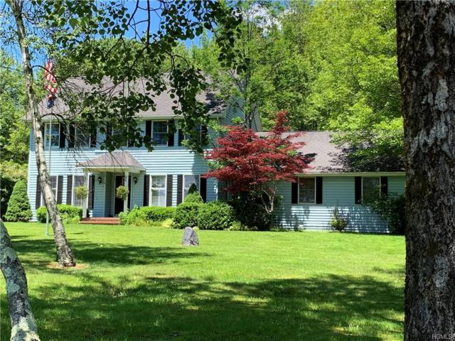 330 Reynolds Road, Loch Sheldrake, NY 12759 (MLS #4994335) :: William Raveis Legends Realty Group