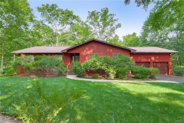 3 Deer Hollow Run, Pomona, NY 10970 (MLS #4994467) :: Mark Boyland Real Estate Team