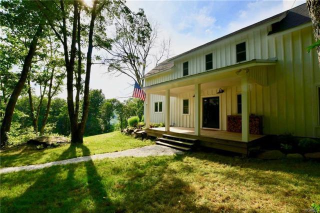 315 Humphrey Road, Narrowsburg, NY 12764 (MLS #4994824) :: Mark Boyland Real Estate Team