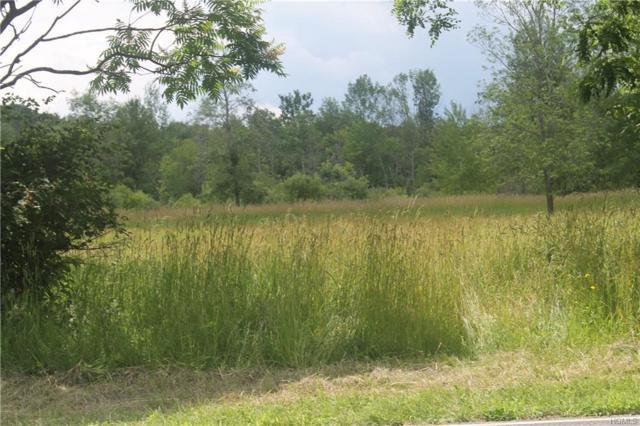 Newry Road, Greenville, NY 12083 (MLS #4994986) :: Mark Boyland Real Estate Team