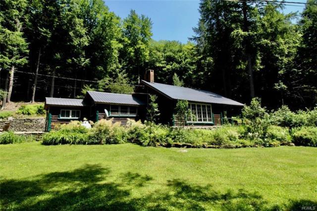 5 Felton Drive, Livingston Manor, NY 12758 (MLS #4995047) :: William Raveis Legends Realty Group