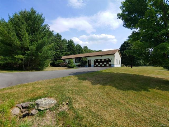 14 Meadowmere Lane, Liberty, NY 12754 (MLS #4995140) :: Mark Boyland Real Estate Team