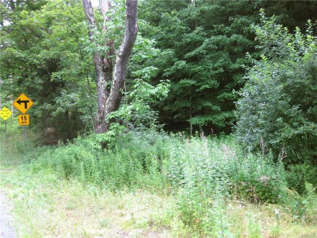 County Route 125 Road, Callicoon Center, NY 12724 (MLS #4995154) :: Mark Boyland Real Estate Team