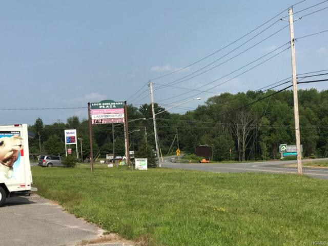 1302-1308 State Route 52, Fallsburg, NY 12733 (MLS #4995166) :: Mark Boyland Real Estate Team