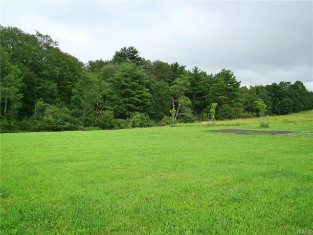 (18.5) Dr Duggan Road, Bethel, NY 12720 (MLS #4995229) :: Mark Boyland Real Estate Team