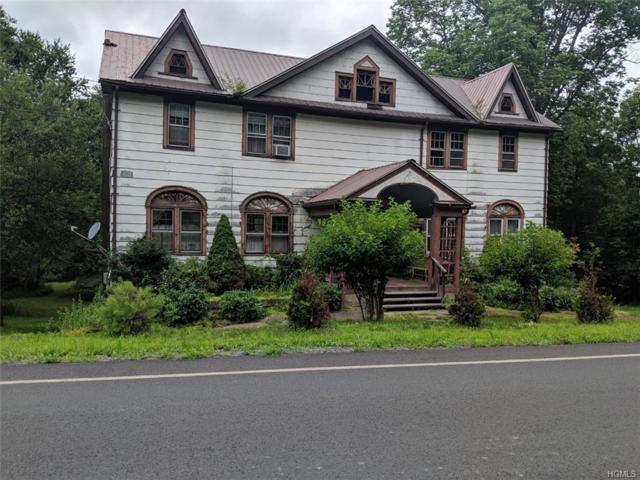 5516 State Route 52, Kenoza Lake, NY 12750 (MLS #4995433) :: Mark Boyland Real Estate Team